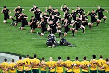 Bledisloe Cup - Wallabies vs All-Blacks